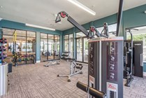 Brand-New, State-of-the-Art Fitness Center
